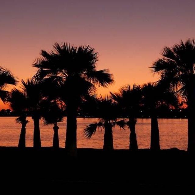 """Ghid Turistic California – Aventură în """"Statul de Aur"""""""