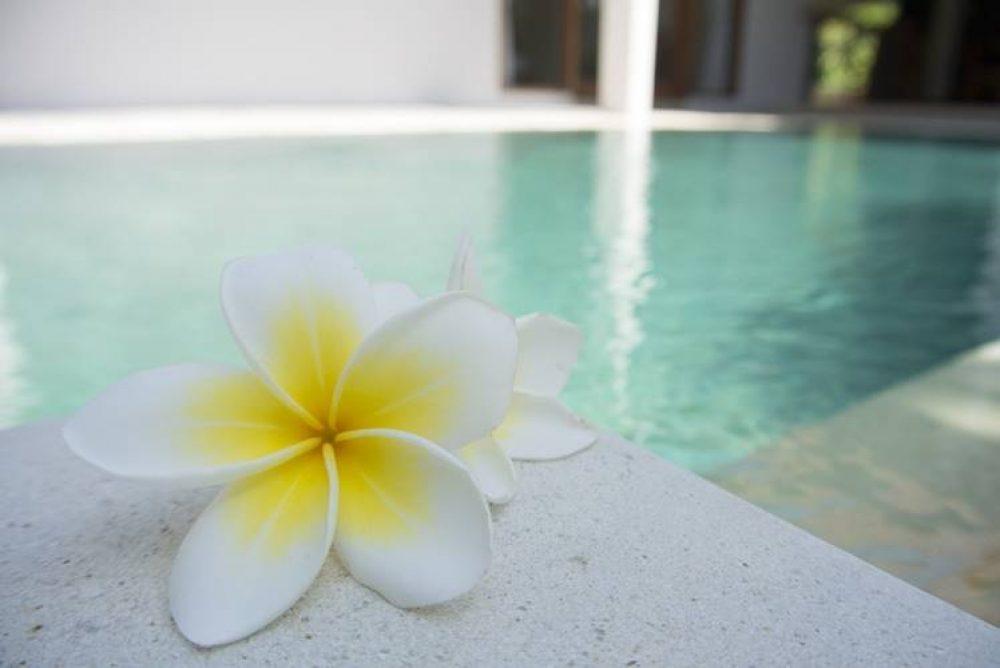Vacanță în Bali – Sfaturi utile și curiozități