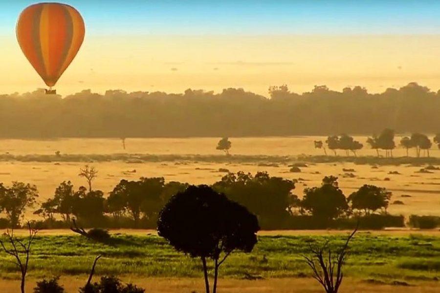 Safari în Africa – O experiență de neuitat